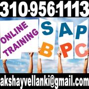 SAP BPC ONLINE TRAINING
